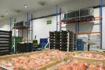 Aggreko_Reynolds_Foods-1503.jpg